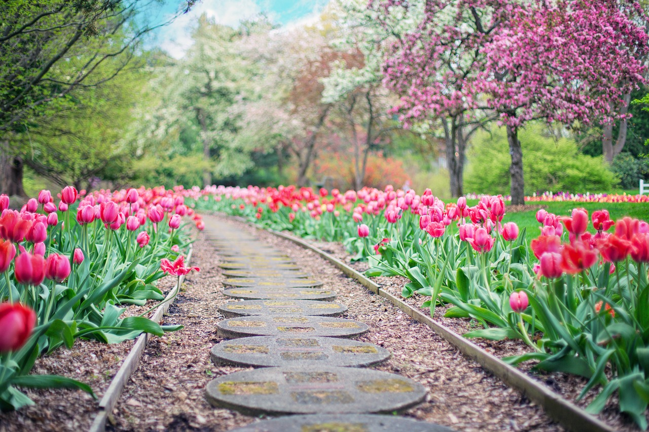 Obrzeża ogrodowe, kiedy warto je stosować?