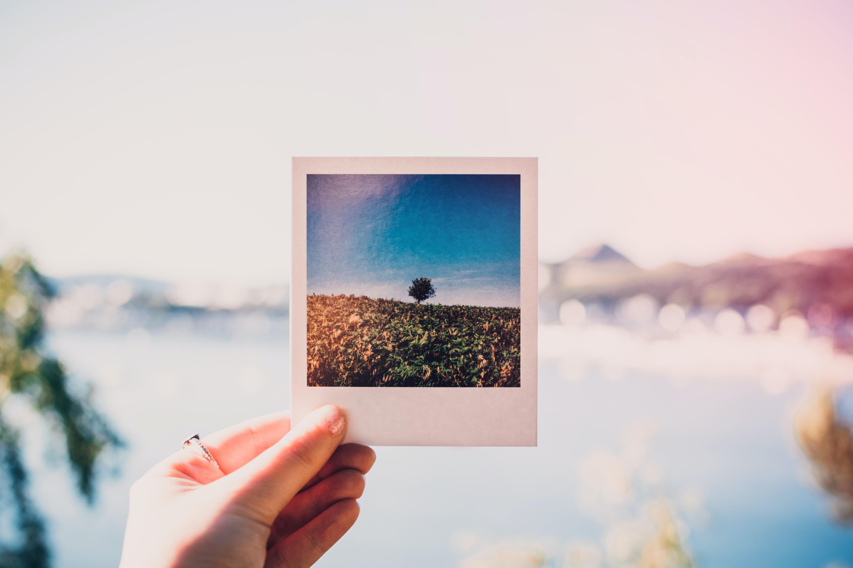 Plakaty ze zdjęcia