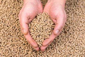 Ekologiczne paliwo opałowe - pellet