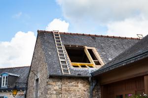 Ile waży profesjonalna drabina dachowa?
